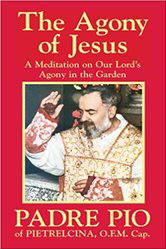<br>The Agony of Jesus